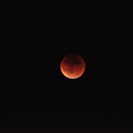 Blood Moon, taken on September 27th, 2015.